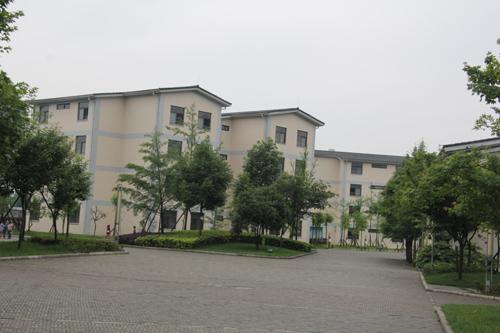 校园内教学楼错落有致,地面铺设渗水砖、楼栋之间植树草