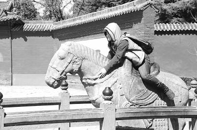 河南洛阳白马寺白马短时间内屡遭游客骑跨。