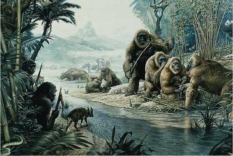 巨猿的一家过着幸福生活,但左边树丛中的直立人(Homo erectus)却探头探脑,磨刀霍霍。今天非洲一些原始部落仍然把黑猩猩、大猩猩当做食物来源,直立人是否也会向自己的近亲下手?