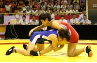天津市青少年摔跤邀请赛举行