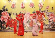 蚌埠医学院央视获奖戏曲节目汇报演出精彩上演