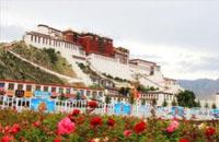 西藏拉萨老教育工作者眼中的教育变迁