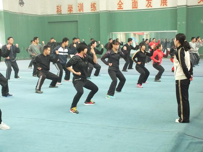 长拳段位学习