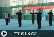 小学组武术操练习