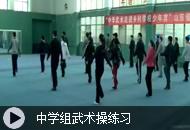 中学组武术操练习