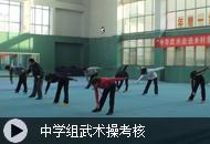 中学组武术操考核