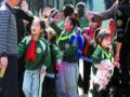 """""""变色""""绿领巾 畸形教育模式"""