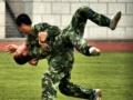解读武术散打教学与训练中的安全问题