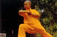 少儿武术教学与训练应注意的问题
