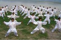中国武术到底有多少拳种