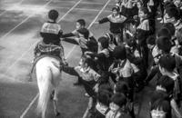 """骑术进校园,孩子过把""""草原骑手""""瘾"""