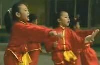 北京市首届幼儿武术比赛
