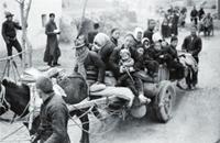 1942年河南大灾荒真相揭露始末
