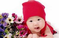 左右宝宝智力的营养元素