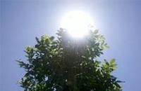 夏季臭氧污染重 午后应减少外出