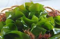 GB19643-2005 藻类制品卫生标准
