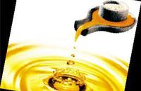 GB10146-2005 食用动物油脂卫生标准
