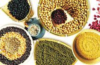 第一集 食品营养与健康