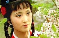 《红楼梦》诗词:咏白海棠