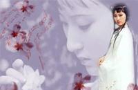 《红楼梦》诗词:五美吟