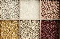 各类食物的营养与安全