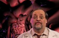 【视频】用脑法则之脑进化