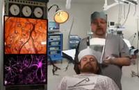 【视频】用脑法则之大脑的具体构造