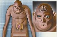 科学家预测人类一千年后模样 酷似