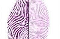 化学实验:显示指纹的方法