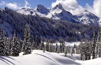 班得瑞《雪的梦幻》陶笛