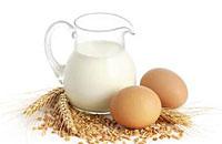 食物黄金搭档:西红柿+橄榄油 鸡蛋+牛奶