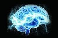 人脑潜能是如何被浪费掉的