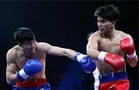 中国武术散打教学--格斗势与步法基础篇
