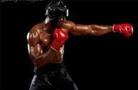 散打基础--拳法