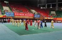 第十三届全国武术学校套路比赛隆重开幕