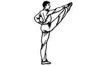直摆性腿法-拍脚