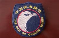 武术段位制的徽饰