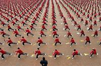浅谈少年武术教学中需要注意的几个问题